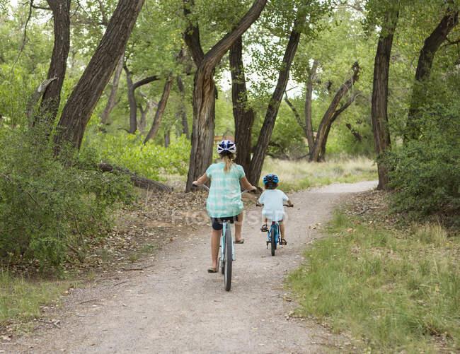 Задній вид на дітей, які їздять на брукованій дорозі. — стокове фото