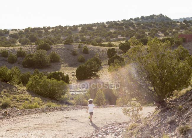 Четырехлетний мальчик путешествует по сельской местности — стоковое фото