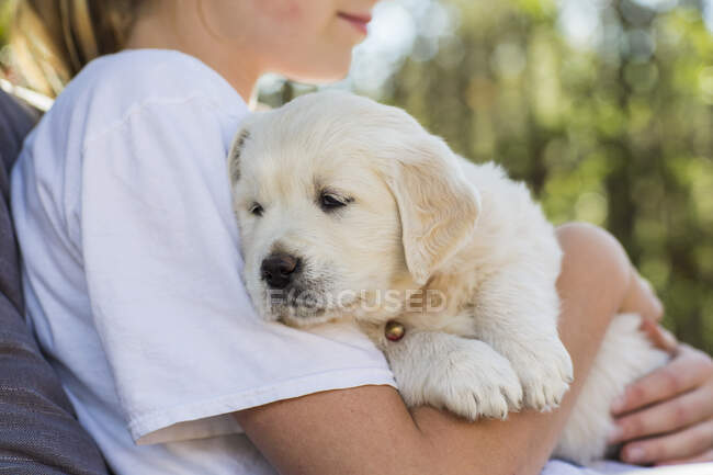 Adolescent fille tenant golden retriever chiot — Photo de stock