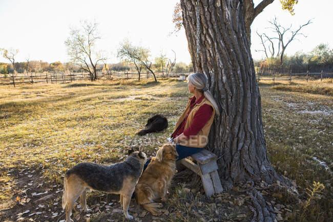Donna matura a casa nella sua proprietà in un ambiente rurale seduto sotto un albero, con tre documenti — Foto stock