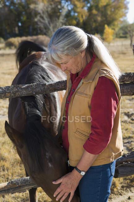 Donna matura a casa sua accarezzando un cavallo in un paddock — Foto stock