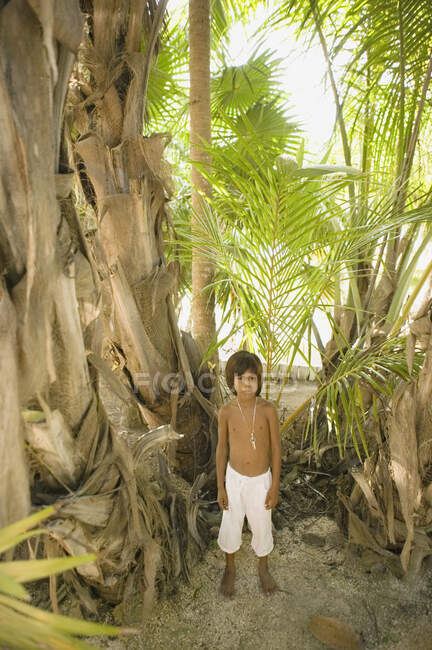Young boy posing for the camera next to palm trees — Stock Photo