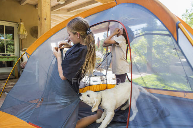 Teenage girl and her younger brother setting up a tent, a cute puppy tugging the tent fabric. — Stock Photo