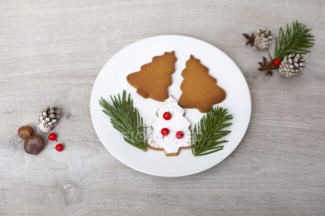 High angle close up of Christmas decorations and Christmas Tree cookies on a white plate. — Stock Photo