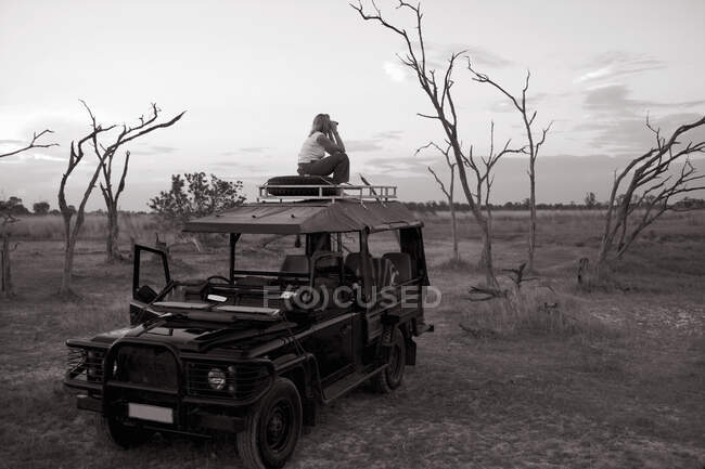Woman on top of 4x4 parked in the Moremi Reserve, Botswana. — Stock Photo