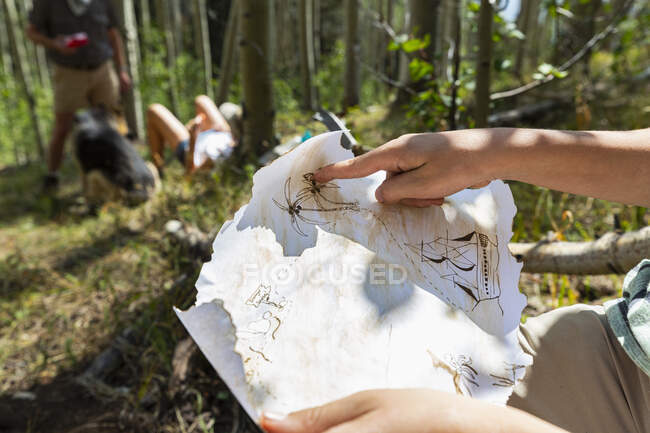 Cropped shot of boy holding treasure map in forest of Aspen trees — Stock Photo