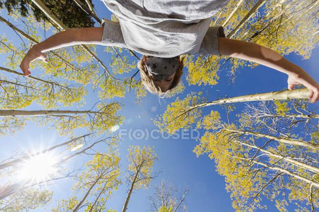 Низкий угол зрения на мальчика в маске COVID с осенью осины выше — стоковое фото