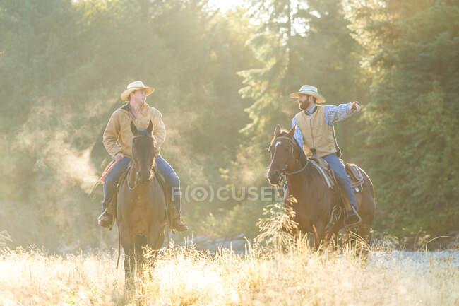 Cowboys and horses, British Colombia, Canadá. — Fotografia de Stock