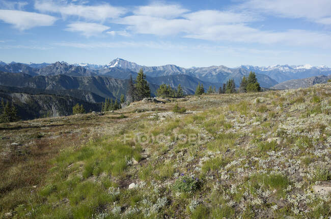 The North Cascade Range, view from the Pacific Crest Trail — Stock Photo