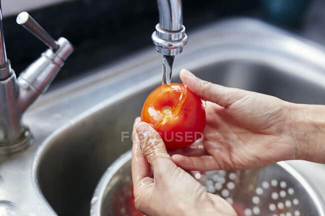 Крупным планом частичный вид женщины, моющей помидоры в раковине — стоковое фото
