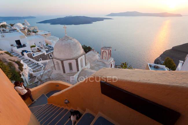 Cat, chiesa e Fira città al tramonto, Fira, Santorini, Isole Cicladi, Grecia — Foto stock