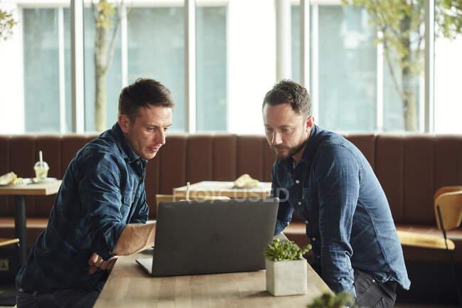 Двоє чоловіків сидять у кафе і дивляться на екран ноутбука. — стокове фото
