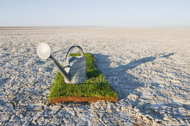 Watering can on grass turf patch on salt flat. — Stock Photo