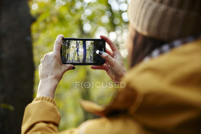 Woman holding up smart phone taking photograph of trees — Stock Photo