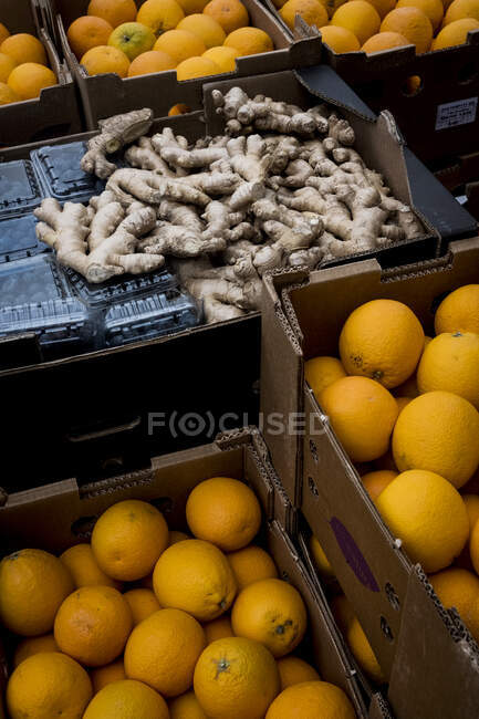 High angle close up of blueberries, fresh ginger and crates of oranges. — Stock Photo