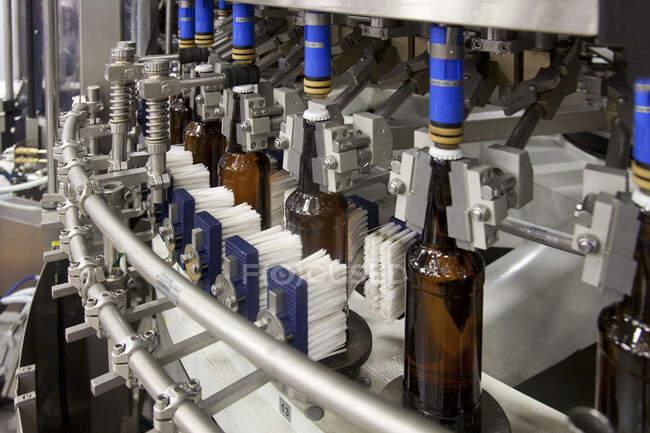 Завод по розливу пива с движущимися лентами, рядами бутылок, автоматизированным процессом, укупоркой и маркировкой и размещением в ящиках — стоковое фото