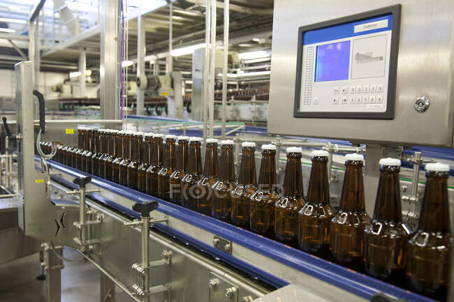 Beer bottling plant with moving belts, rows of bottles, automated process, capping and labeling and placing in crates — Fotografia de Stock