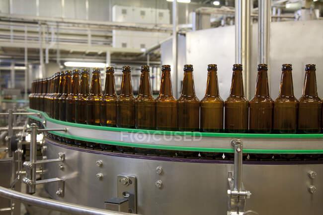 Завод по розливу пива с движущимися лентами, рядами бутылок, автоматизированным процессом, укупоркой и маркировкой — стоковое фото