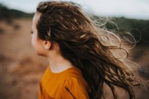 Little girl with wind tousled hair — Stock Photo