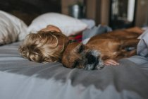 Хлопчик, пригортаються в ліжку з його собака — стокове фото