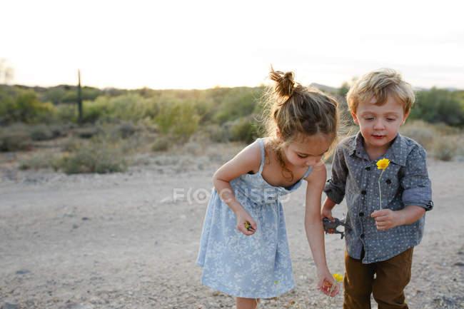 Adorables enfants jouant dehors avec des fleurs — Photo de stock
