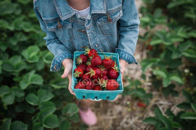 Girl walking with freshly picked strawberries — Stock Photo