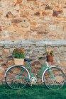 Bicicleta vintage con flores - foto de stock