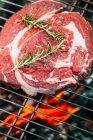 Carne cruda a la parrilla - foto de stock