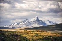 Beautiful snowy mountains in Peru — Stock Photo