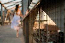Крупним планом сітки паркан на фоні розмиті балерина при сонячному світлі — стокове фото