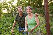 Paar ältere Erwachsene Lachen im Garten — Stockfoto