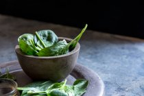 Spinaci freschi su stoviglie calcestruzzo rustico — Foto stock
