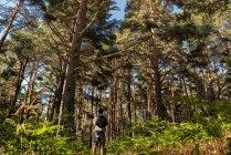 Людина пригоди в лісі — стокове фото