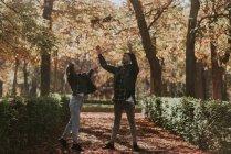 Casal alegre jogando folhagem de outono no ar no beco do parque — Fotografia de Stock