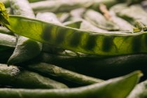 Fresh organic peas and pods — Stock Photo