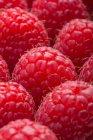 Macro shot of raspberries — Stock Photo