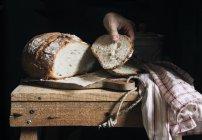 Donna presa pezzo di pane — Foto stock