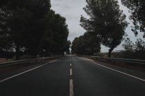 Voir à la route dans la campagne d'asphalte à jour nuageux — Photo de stock