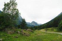 Горная долина с туристами, идущими по сельской дороге — стоковое фото