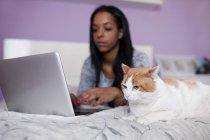 Милый кот, лежа у девушки Просмотр ноутбук на кровати — стоковое фото