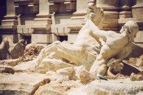 Чайка на багато прикрашений скульптурами Fontana di Trevi ансамблю — стокове фото