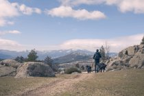 Rear view man walking down mountain with dogs on sunny day — Stock Photo
