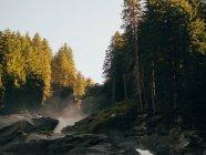 Mostra al flusso tra le rocce e gli alberi — Foto stock