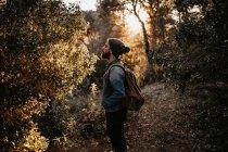 Бородач с рюкзаком смотрит на дерево в лесу — стоковое фото
