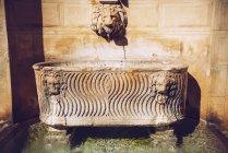 Fontana a bassorilievo ornata con teste di leone sulla facciata dell'edificio — Foto stock