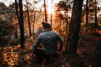 Visão traseira do homem sentado à árvore em bosques iluminados pelo sol — Fotografia de Stock