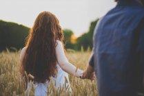 Vista posterior de chica con el pelo rojo rizado con novios mano y caminar en el campo de centeno - foto de stock