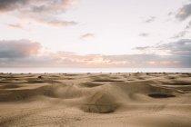 Dünenlandschaft in Wüste — Stockfoto