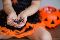 Child hands holding decorative spiders — Stock Photo