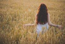 Вид сзади на молодую девушку с длинными вьющимися рыжими волосами, держащую сгибающиеся руки в стороне на ржаном поле в лучах заката — стоковое фото
